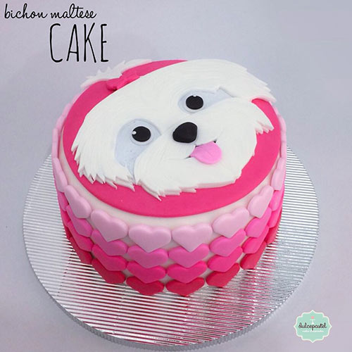 torta bichon maltes medellin dulcepastel