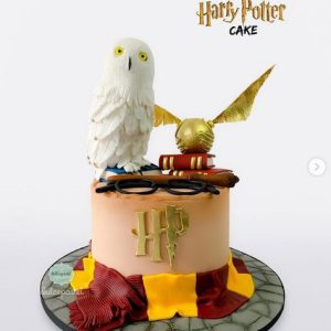 Torta de Harry Potter en Envigado
